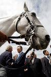 Presidente Cavaco Silva visitou Feira Nacional da Agricultura